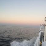遊漁船 太郎丸