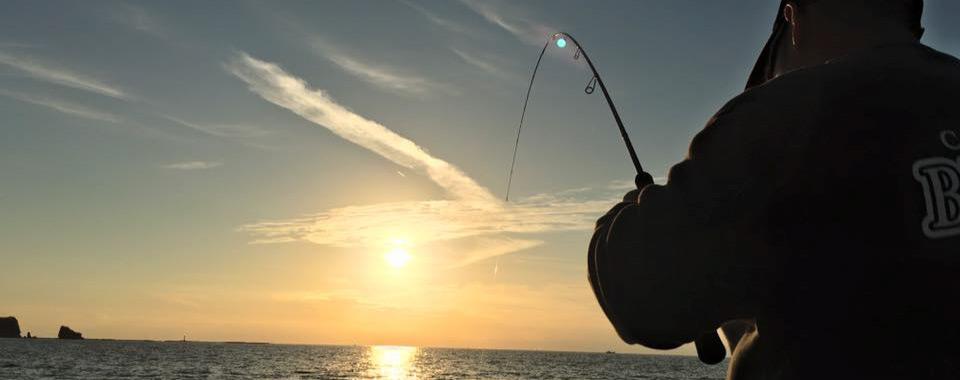 黒潮、紀伊水道など紀南の海を楽しみませんか